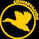 Conservacion